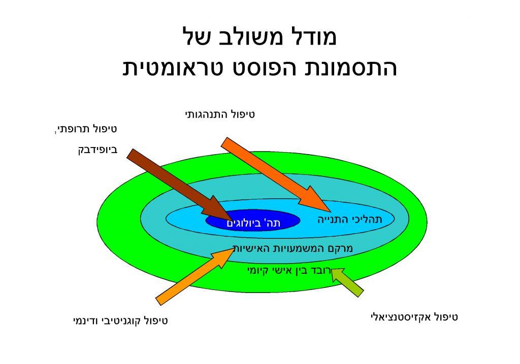 arik shalev